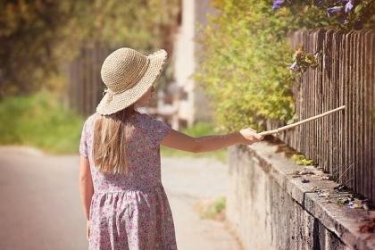 Jak wybrać dobre ogrodzenie?