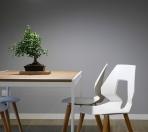 Minimalistyczne krzesła do jasnego wnętrza